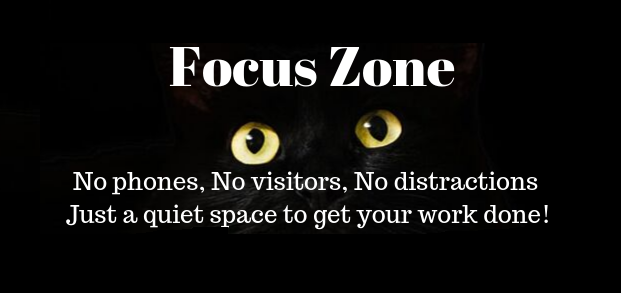 Focus Zone Eyes Logo